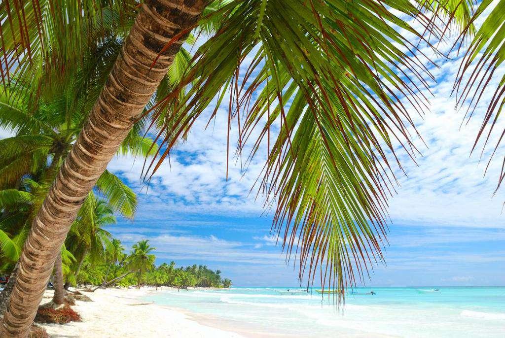отдых в Доминикане 5