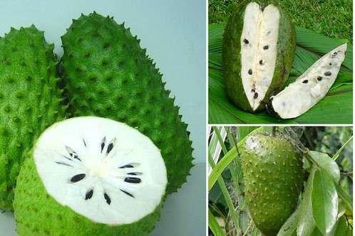 фрукты Доминиканы фото 10